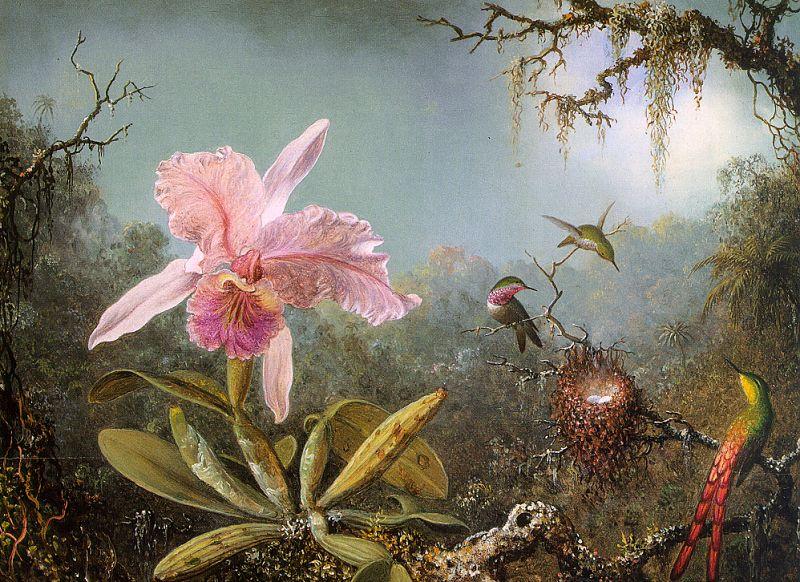 Martin_Johnson_Heade_-_Cattelya_Orchid_and_Three_Brazilian_Hummingbirds_CGF